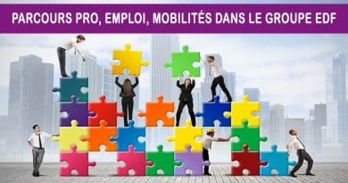 Parcours Pro, Emploi, Mobilités dans le groupe EDF
