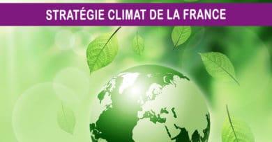 En marche vers la neutralité carbone mais à quel prix et surtout pas tout seul !