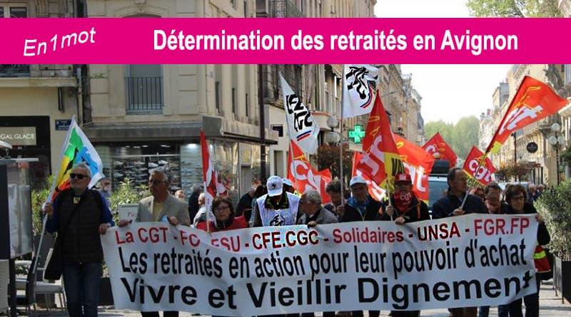 La CFE CGC dignement représentée à la manifestation des retraités