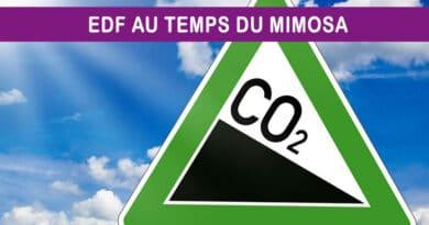 C'est la relance bas carbone du pays qui doit être l'horizon d'EDF !