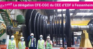 La délégation CFE-CGC du Comité d'Entreprise Européen d'EDF à Fessenheim